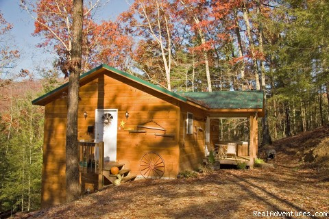 Letter Re: Building Cabins on a Shoestring Budget