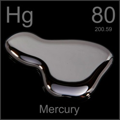MERCURY IN THE ENVIRONMENT AND YOUR BODY