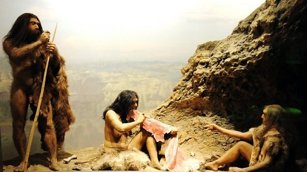 Radical theory of first Americans places Stone Age Europeans in Delmarva 20,000 years ago