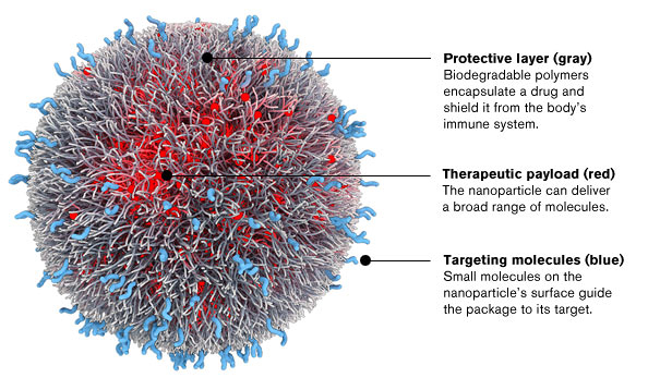 Fine-tuning Nanotech to Target Cancer