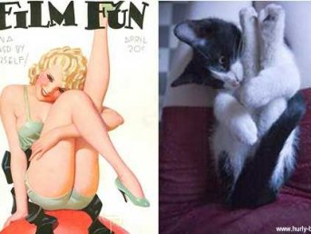 These Cats That Look Like Pinup Girls Are Actually Extremely Clever Ads