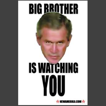 big brother isnt watching you analysis