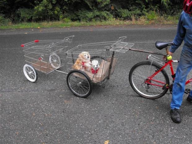 102-0916134223-shoppinc-cart-trailer.JPG