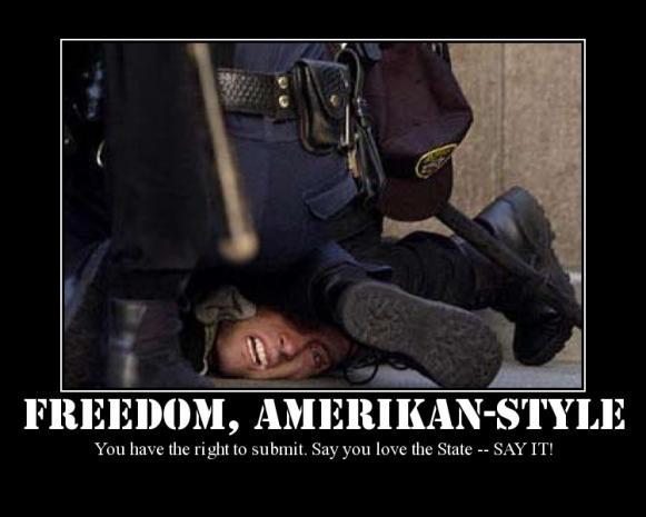 police state amerika