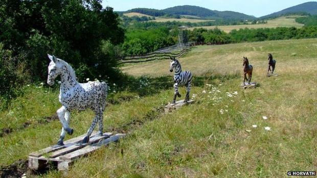 Zebra Stripes Keep Horse Flies at Bay