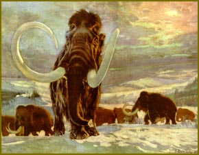 Scientists to bring extinct woolly mammoth back to life with the help of elephants