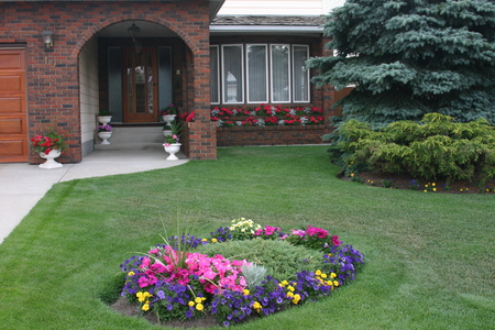 Nh woman sued for planting flowers in her front yard - Flowers for the front yard ...