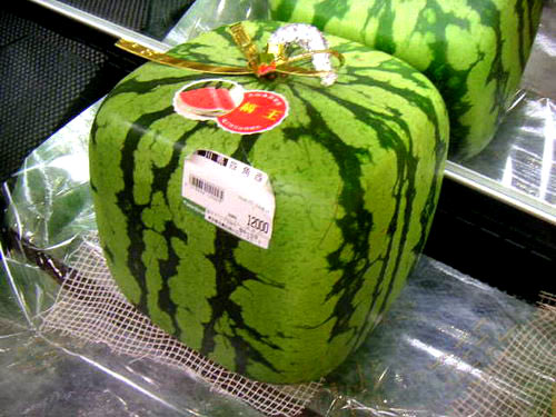 Pics Of Watermelon. The Watermelon You Should