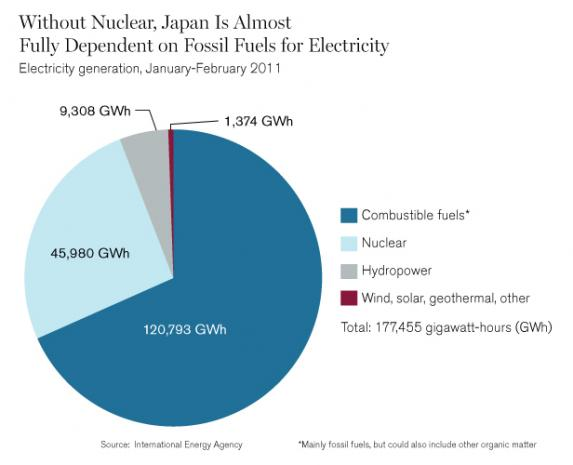 Can Japan Thrive without Nuclear Power?