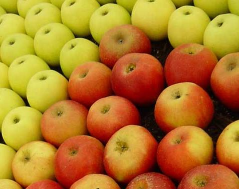 unwashed apples unhealthy