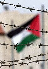Courageous Palestinian resistance against Israeli repression