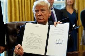 Trump's EO Accelerates Proliferation of GMOs