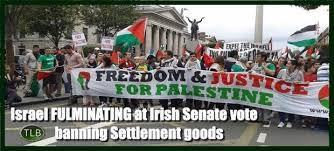 Ireland's Senate Approves Bill Banning Israeli Settlement Products