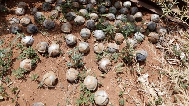 Azeris Using Banned Cluster Munitions in Nagorno-Karabakh