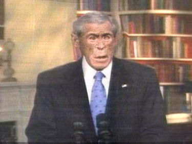 Farewell To The Chimp