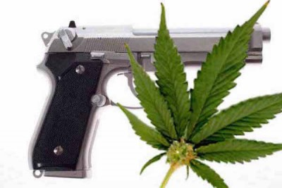 Court ruling against medical marijuana users buying guns - PDF Document (Wilson v. Lynch)