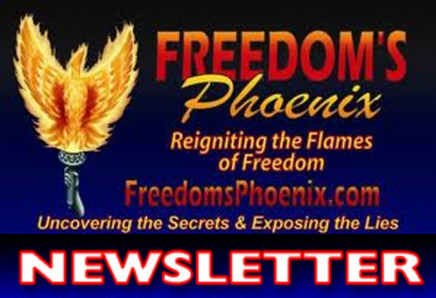We Saw it Coming - Freedom's Phoenix Newsletter from 2011-09-14