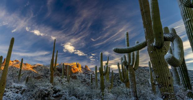 Arizona Breakfast Club Topic: FAIRtax