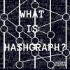 Hashgraph The Future of Decentralized Technology